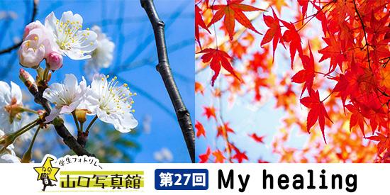 学生フォトリレー山口写真館 第27回 My healing(撮影:下関福祉専門学校 有光尚未さん)