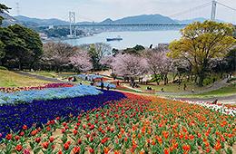 下関市 火の山トルコチューリップ園『オルハン・スヨルジュ記念園』