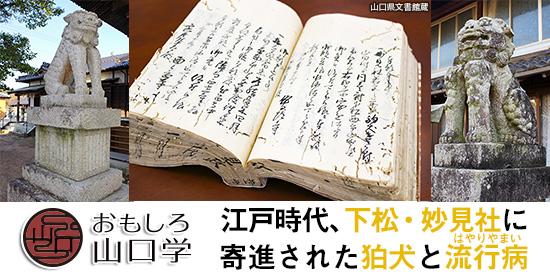 おもしろ山口学 江戸時代、下松・妙見社に寄進された狛犬と流行病(はやりやまい)